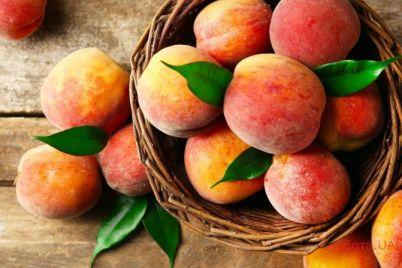 v-zaporozhskoj-oblasti-vyrastili-gigantskij-frukt-fotofakt.jpg
