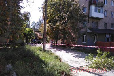 v-zaporozhskoj-oblasti-vysokovoltnye-provoda-upali-pryamo-na-kryshu-avtomobilya-s-passazhirami-foto.jpg