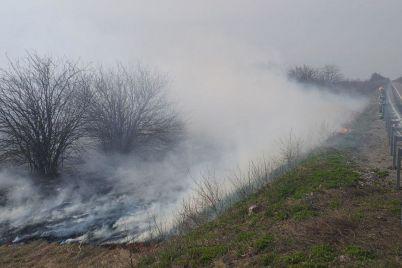 v-zaporozhskoj-oblasti-za-sutki-pozhary-unichtozhili-ekosistemy-na-ploshhadi-v-5-futbolnyh-polej-foto.jpg