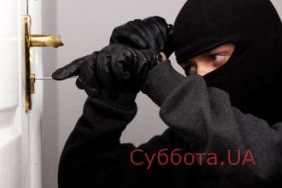 v-zaporozhskoj-oblasti-zaderzhali-vora-domushnika.jpg