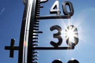 v-zaporozhskoj-oblasti-zafiksirovali-temperaturnyj-rekord.jpg