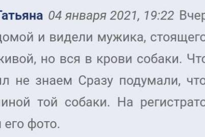 v-zaporozhskoj-oblasti-zhestoko-raspravilsya-s-sobakoj-mestnye-zhiteli-opoznali-zloumyshlennikov.jpg