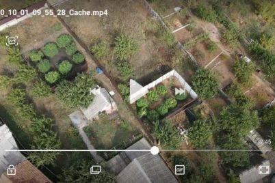 v-zaporozhskoj-oblasti-zhiteli-ustroili-narkoplantacziyu-v-czentre-goroda.jpg