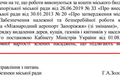 v-zaporozhskom-aeroportu-iz-za-stroitelnyh-rabot-spilyat-242-dereva.png
