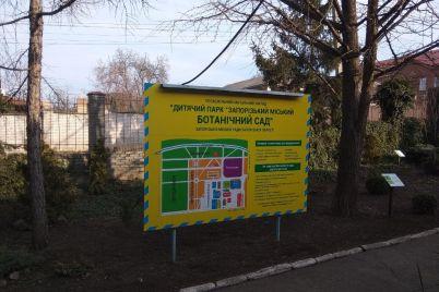 v-zaporozhskom-botsadu-otczvetayut-kally-i-zaczvela-leshhina-foto.jpg