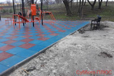v-zaporozhskom-landshaftnom-parke-ustanovili-sportivnuyu-ploshhadku-fotoreportazh.jpg