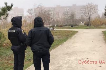 v-zaporozhskom-parke-dvornik-natknulas-na-zhutkuyu-nahodku-video.png