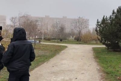 v-zaporozhskom-parke-utrom-nashli-granatu.jpg