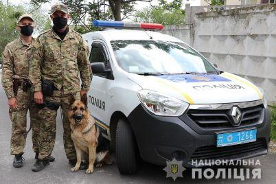 v-zaporozhskom-sele-sluzhebnaya-sobaka-pomogla-najti-vora.jpg