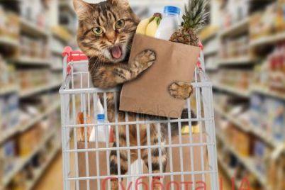 v-zaporozhskom-supermarkete-kot-nasmeshil-pokupatelej-foto.jpg