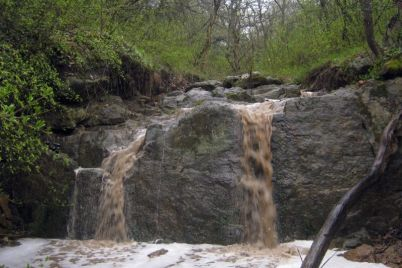 v-zapovednike-pod-zaporozhem-mozhno-uvidet-moshhnyj-vodopad-foto.jpg