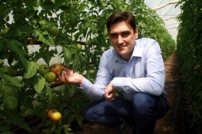 vitaminy-dlya-biznesa-v-zaporozhe-razrabotali-plan-podderzhki-mestnyh-agrariev.jpg