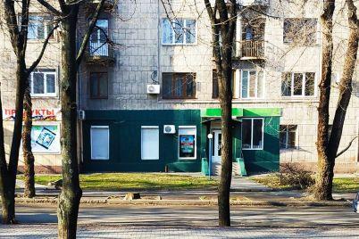 vlasniczya-zelenogo-shmatku-istorichnod197-budivli-u-zaporizhzhi-gotova-vse-vipraviti.jpg