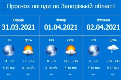 vnimanie-voditelej-v-zaporozhskoj-oblasti-budet-gustoj-tuman.png