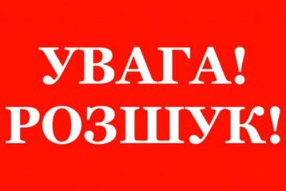 vodij-mersedesa-na-smert-zbiv-17-richnogo-meshkanczya-zaporizhzhya-prohannya-dopomogti.jpg