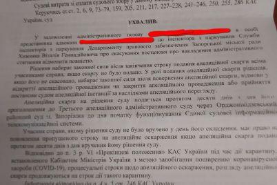 vodij-ne-zmig-oskarzhiti-shtraf-yakij-jomu-vipisala-zaporizka-inspekcziya-z-parkuvannya.jpg