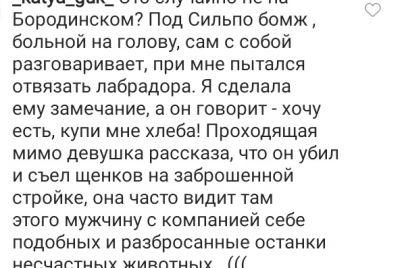 vozle-zaporozhskogo-magazina-pytalis-ukrast-sobaku-kotoruyu-hozyaeva-ostavili-bez-prismotra.jpg
