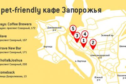 vozmi-reksa-s-soboj-5-kafe-v-zaporozhe-kuda-mozhno-pridti-s-sobakoj.png