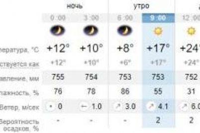 vse-na-prirodu-kakaya-pogoda-segodnya-v-zaporozhe-1.jpg