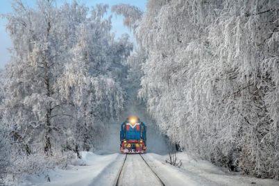 vsi-do-lvova-k-8-marta-iz-zaporozhya-pustyat-eshhe-odin-poezd.jpg