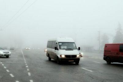 vyshel-za-sigaretami-i-ne-vernulsya-zaporozhskij-marshrutchik-zabyl-o-passazhirah-video.jpg