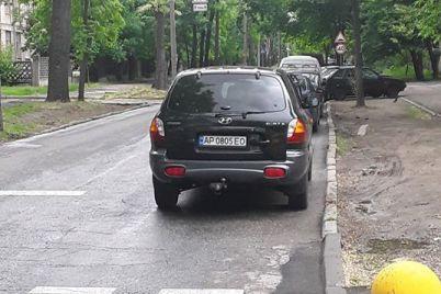 ya-invalid-mne-mozhno-stoyat-na-perehode-odno-iz-opravdanij-zaporozhczev-pered-inspektorami-po-parkovke-za-narushenie-foto.jpg