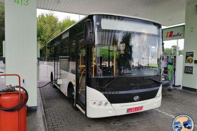 yak-viglyadad194-zaporizkij-avtobus-yakij-zbirayut-dlya-polyakiv.jpg