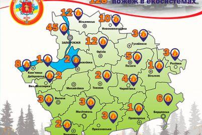 za-nedelyu-v-zaporozhskoj-oblasti-pozhary-unichtozhili-ekosistemy-na-ploshhadi-razmerom-s-ses.jpg