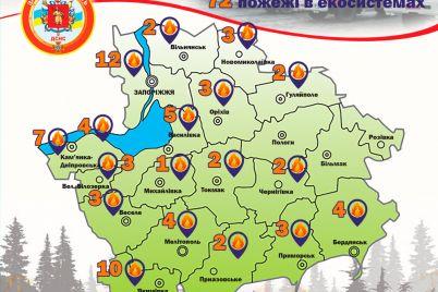 za-nedelyu-v-zaporozhskoj-oblasti-pozhary-unichtozhili-ekosistemy-na-ploshhadi-v-36-futbolnyh-polej.jpg