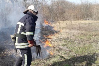 za-ostannyu-dobu-v-zaporizkij-oblasti-stalosya-42-pozhezhi-na-vidkritih-teritoriyah.jpg