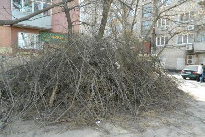 za-pershij-misyacz-vesni-oleksandrivskij-rajon-zaporizhzhya-rozchistyat-vid-sezonnogo-smittya.jpg
