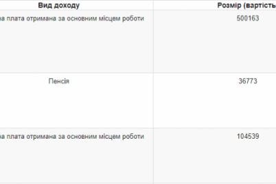 zammera-zaporozhya-zadeklariroval-13-milliona-griven-dohoda-semi-i-pokupku-dvuh-novyh-avto.png