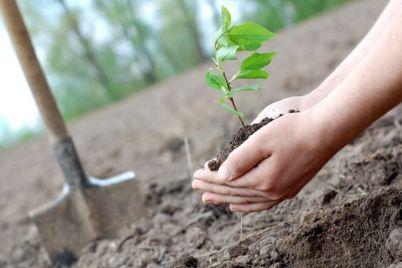 zaporizhzhya-gotud194tsya-do-masshtabnod197-ekologichnod197-akczid197.jpg