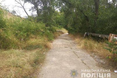 zaporizka-oblast-policzejski-rozshukuyut-svidkiv-rozbijnogo-napadu.jpg