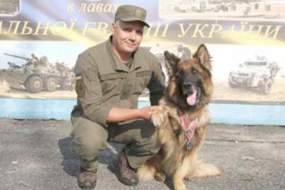 zaporizkogo-policzejskogo-psa-nagorodili-pochesnoyu-medallyu.png