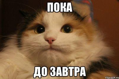 zaporozhczy-originalno-poproshhalis-s-politikami-proigravshimi-parlamentskuyu-gonku-video.jpg