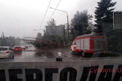 zaporozhczy-podelilis-v-soczseti-fotografiyami-posledstvij-nepogody-v-gorode-foto.jpg