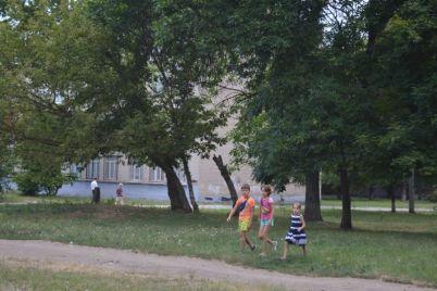 zaporozhczy-ubrali-opasnyj-musor-s-territorii-zabroshennogo-detskogo-sada.jpg