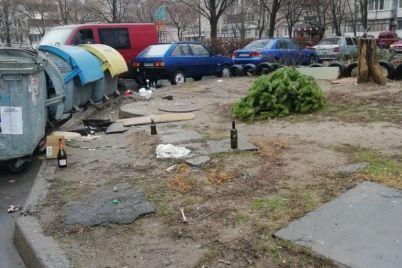 zaporozhczy-uzhe-nachali-izbavlyatsya-ot-elok-foto.jpg