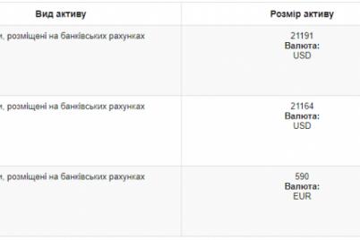 zaporozhskaya-deputatka-obmenyalas-dengami-so-svoim-pomoshhnikom.png