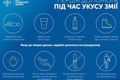 zaporozhskaya-oblast-popala-v-top-3-po-kolichestvu-obrashhenij-v-meducherezhdeniya-iz-za-ukusa-zmej.png