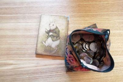 zaporozhskaya-zhurnalistka-potratila-5-chasov-chtoby-obmenyat-monety.jpg
