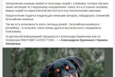 zaporozhskie-aktivisty-ishhut-volontyorov-s-sobakami-dlya-poiskov-propavshih-detej.jpg