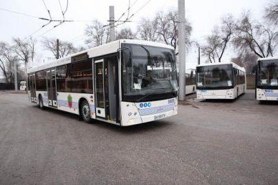zaporozhskie-chinovniki-prosyat-kabmin-vozit-po-20-chelovek-v-bolshih-avtobusah-i-trollejbusah.jpg