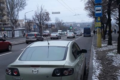 zaporozhskie-inspektory-po-parkovke-napomnili-gde-nelzya-parkovatsya-i-skolko-stoit-narushenie-foto.jpg