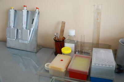 zaporozhskie-mediki-ispolzuyut-bolee-deshevye-ukrainskie-testy-na-koronavirus.jpg