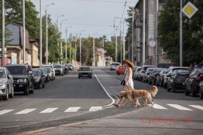 zaporozhskij-mer-podelilsya-v-seti-fotografiyami-luchshih-obuektov-v-nashem-gorode-foto.jpg