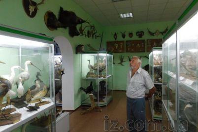 zaporozhskij-zoologicheskij-muzej-ishhet-meczenatov-chtoby-kupit-kollekcziyu-gnezd-i-yaicz.jpg