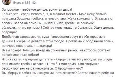 zhena-krichala-otbivalas-ot-sobaki-zvala-na-pomoshh-v-zaporozhe-brodyachiy-pes-pokusal-zhenshhinu.png