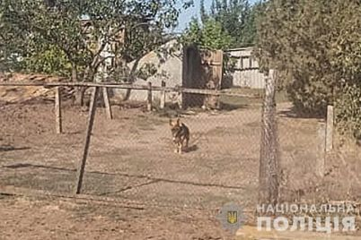 zhitel-zaporozhskoj-oblasti-spustil-na-policzejskih-sobaku-foto.jpg